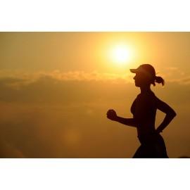 Renforcement optimal pour une compétition en endurance